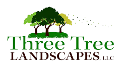 Three Tree Landscapes